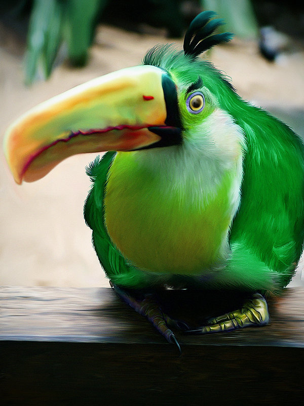 parrot-angry-bird
